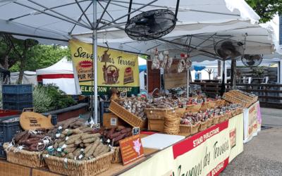 Les marchés estivaux de la côte landaise !